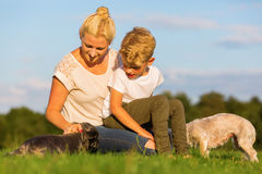 Mother with her son playing with two small dog Royalty Free Stock Photos