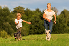 Mother runs with her boy and two small dog on a meadow Royalty Free Stock Images