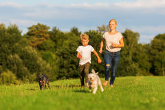 Mother runs with her boy and two small dog on a meadow Stock Photo
