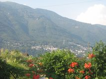 A picture of mountains in Switserland. With flowers in front and a village at a background taken during a vacation in the summer Stock Image