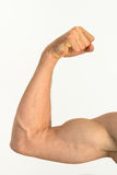 Picture of a muscular arm flexing. Picture of a white muscular arm flexing Stock Photo