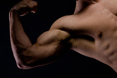 Picture of a muscular arm flexing on black Royalty Free Stock Image