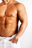 Picture of muscular males body Royalty Free Stock Photo