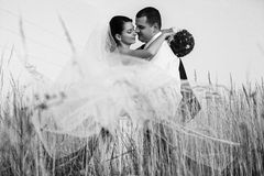 A picture of newlyweds standing behind a flying veil Royalty Free Stock Photo