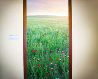 Picture of a open door Royalty Free Stock Photos