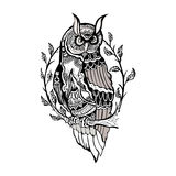 Picture owl on white background vector image Stock Photo