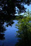 Pacific Northwest forest and inland lake. A picture of an Pacific Northwest Washington state forest and fresh water lake stock photos