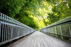 Pathway on a bridge going through the forest. A picture of a pathway on a bridge going through the forest Royalty Free Stock Photos
