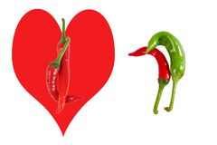 Picture of the peppers, as an illustration of different sexes an Stock Images