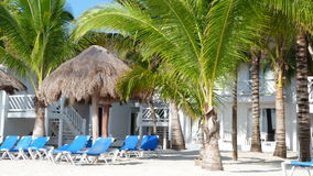 Picture Perfect Resort. Hotel, beach, chairs and palm trees make for a picture perfect resort photo taken in Cozumel Mexico stock photography