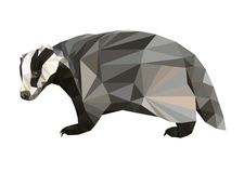 Picture polygon shape badger. Picture polygon  shape badger Stock Photo