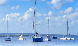 Picture of Praia do Jacare beach, several boats side by side in the boat harbor. Stock Photography