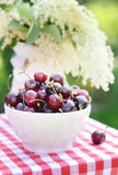 Picture presenting a bowl of sweet cherries Royalty Free Stock Photo