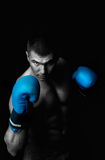 Picture of professional boxer. Portrait of attractive boxer in the dark Stock Images