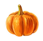 Picture of Pumpkin Stock Photo