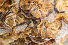 Picture of put down dried monkfishes Royalty Free Stock Photo
