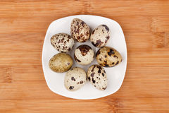 The picture quail eggs Stock Image
