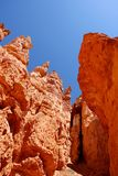 Rock formations from Bryce Canyon National Park Utah. A picture of rock formations from Bryce Canyon National Park Utah Royalty Free Stock Photos