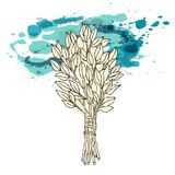 The picture for the Russian bath. Birch whisks for the sauna. Logo for the bath company. Place for your text. Hand. Drawing on the blue watercolor spot stock illustration