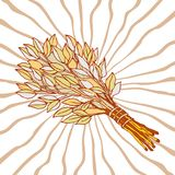 The picture for the Russian bath. Birch whisks for the sauna. Logo for the bath company. Place for your text. Hand. Drawing on the background of radial rays stock illustration