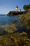 Picture of the San Juan Island bay Light House. Picture of a shore of San Juan Island WA Royalty Free Stock Photos