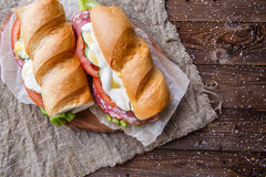 Picture of sandwich on paper Royalty Free Stock Images