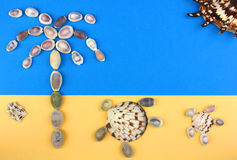 Picture of seashells, tropical beach, palm tree, turtles, sun Royalty Free Stock Photos