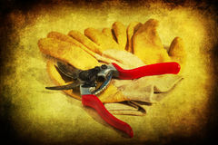 Secateurs and garden gloves with grunge texture Stock Photo