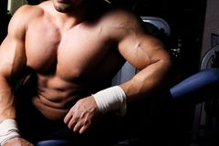 Picture of sexy torso in gym Royalty Free Stock Photography