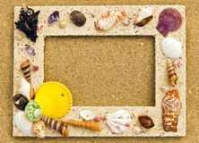 Picture shell frame Royalty Free Stock Photography