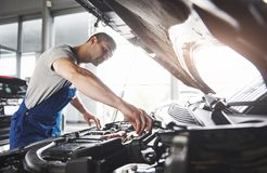 Picture showing muscular car service worker repairing vehicle.  Royalty Free Stock Photo