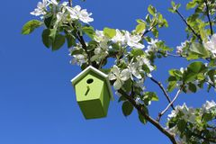 Bird house in the blossoming apple tree. The picture shows a bird house in the blossoming apple tree stock photos