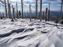 Mountain landscape with trees and detailed snow rifts stock photo