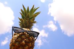 Funny pineapple with sunglasses and the blue summer sky stock photo