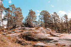 Rock plateau in a forest in Norway stock photo