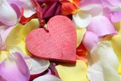 A red heart on rose petals stock photography