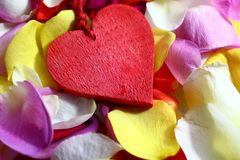 A red heart on rose petals stock image