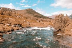 Little river in norway with the view at the mountains royalty free stock photos