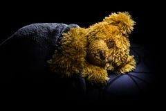 Sleeping teddy bear. A picture of a sleeping teddy bear Royalty Free Stock Photo