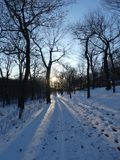 Snowy path in Mont-Royal stock photos