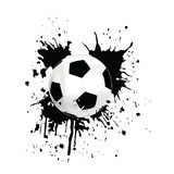 Picture of a soccer Stock Photography