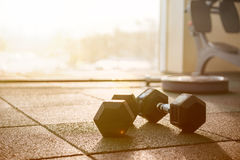 Picture of sport equipment in gym. Dumbbells on floor Stock Photo