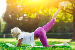 Picture of sports woman engaged in fitness Stock Photo