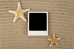 Picture with starfishes Stock Images