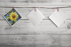 Picture of sunflower and empty notepad hanging on ribbon Royalty Free Stock Image