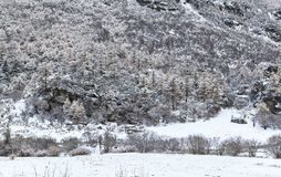 Amazing winter season at Yading Nature Reserve in Sichuan, China royalty free stock images