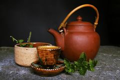 A picture of a Tee kettle and herbs. A picture of a Tee kettle pepperment and herbs Royalty Free Stock Photos