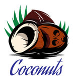 Picture with three broken coconuts Stock Image