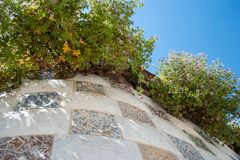 Flowers, blue sky and handmade tiles in Parc Güell royalty free stock photos