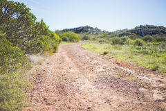 Picture of track in arid landscape Royalty Free Stock Photos